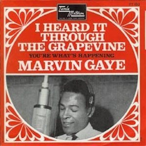 Gaye Grapevine sleeve