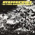 「力作」と評されたステッペンウルフの3枚目のアルバム『At Your Birthday Party』