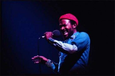 Marvin-Gaye-530-366x244